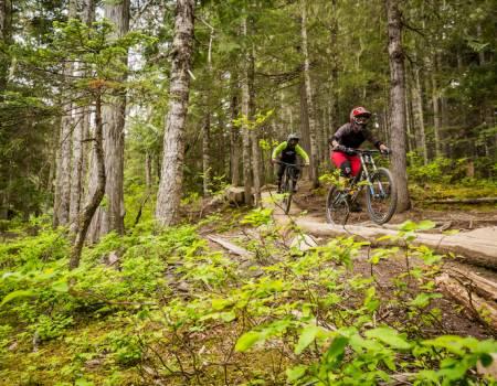 mountain biking trails at whistler blackcomb in british columbia canada